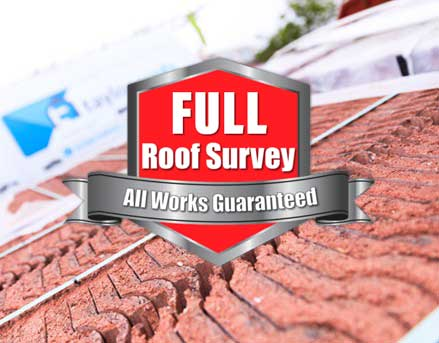 Full Roof Survey